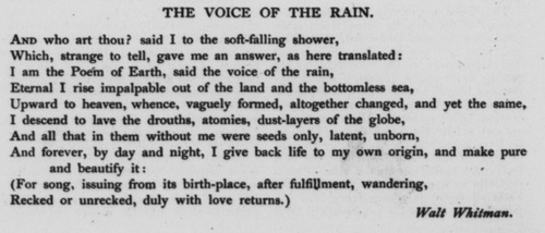 Walt Whitman Poem Essay?